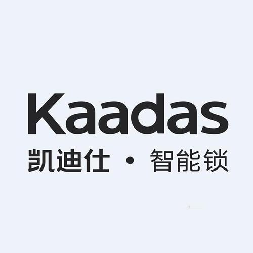 凯迪仕(KAADAS)